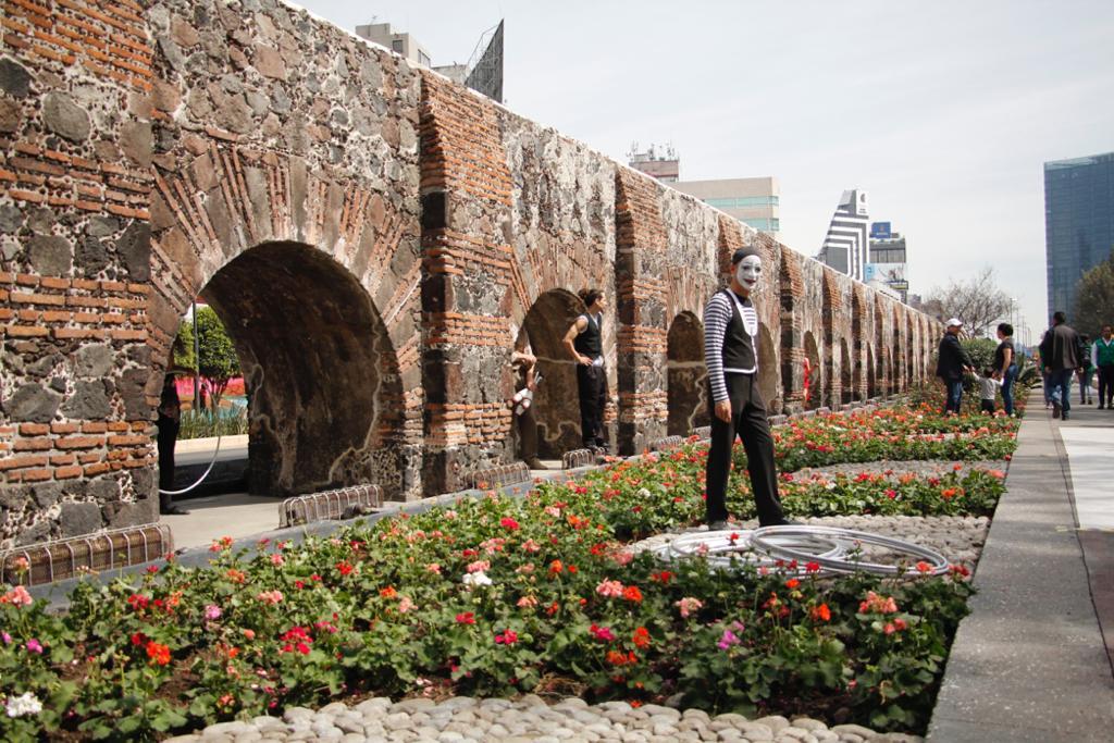 5e3f90645a041578387352 - Gobierno de la Ciudad de México finaliza  rehabilitación y reforestación de Avenida Chapultepec